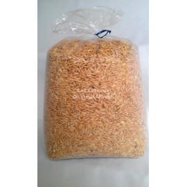 Riz Paddy 4 kg